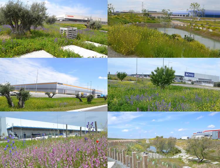 Plataforma Central Iberum incorpora nuevos desarrollos para Mountpark y Gazeley